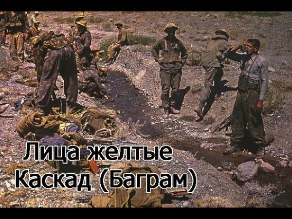 Песни Афгана Лица желтые Каскад Баграм 1983г