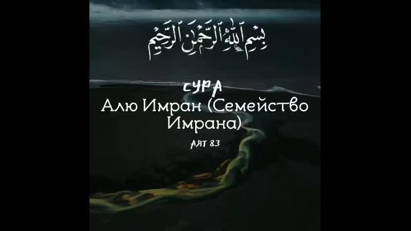 Ars.k17_20200624_3.mp4