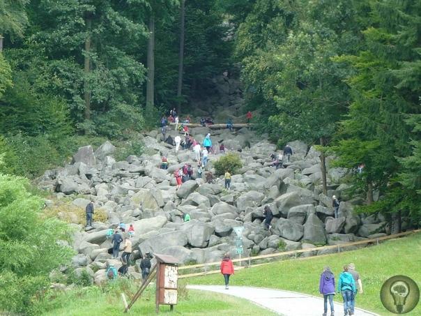 «Каменное море» Германии, которое больше похоже на каменную реку.