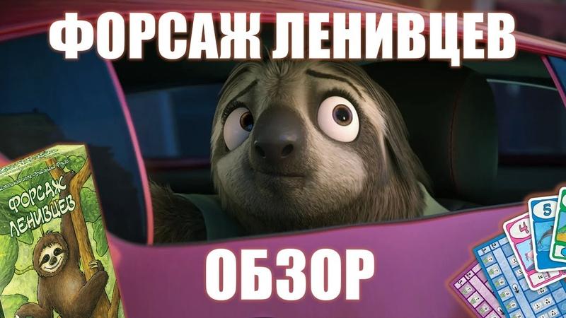 Форсаж ленивцев Fast Sloths обзор настольной игры