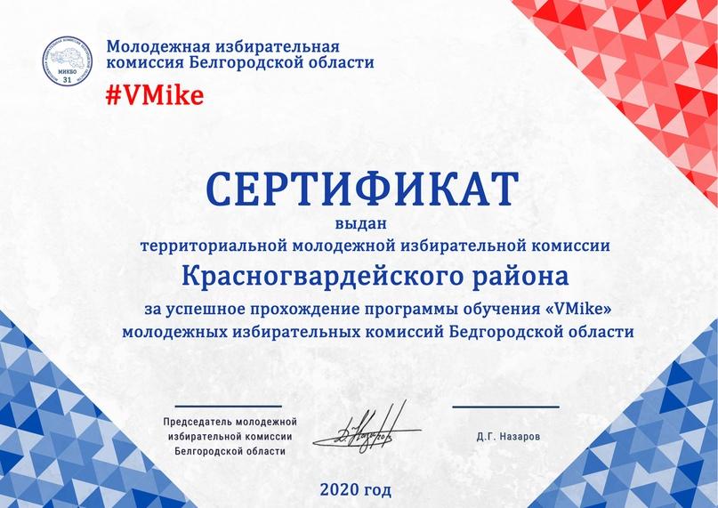 Итоги программы обучения молодежных избирательных комиссий Белгородской области «VMike», изображение №18