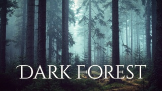 DARK FOREST Ambience and Music - sounds of dark misty forest with ambient music
