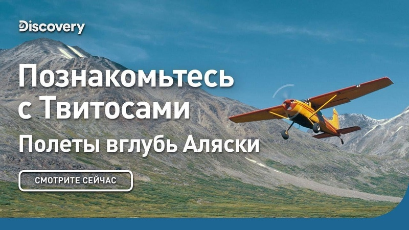 Познакомьтесь с Твитосами Полеты вглубь Аляски Discovery