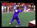 Всемирный конкурс традиционных китайских боевых искусств Фаньцзицюань / 世界中华国术大赛:翻子拳