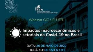 Impactos Macroeconômicos e Setoriais da Covid-19 no Brasil - Esther Dweck