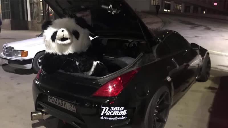 Панда в багажнике Ниссан 350z на Большой Садовой - 30.12.19 - Это Ростов-на-Дону!