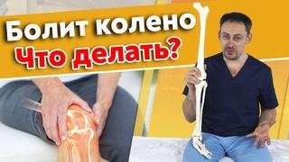 Почему болит коленный сустав?   Как крепятся колени: основные структуры мышц