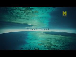 Большой Барьерный риф: Живое сокровище - Жизнь у побережья   2 серия из 4   2020   HD 1080