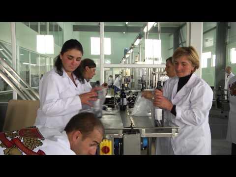 Kakhetian Traditional Winemaking KTW factory