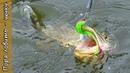 Активный хищник на реке, где его искать, ловля щуки спиннингом на Bait Breath T T Shad.