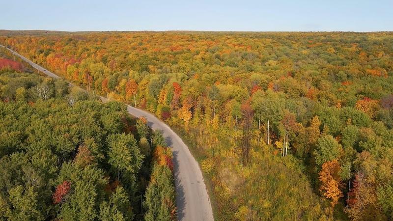 Самарская Дорога любви в осеннем лесу