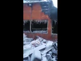 Собачий питомник сгорел в Иркутске