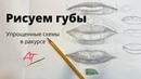 Рисуем губы. Схема построения губ в разных ракурсах