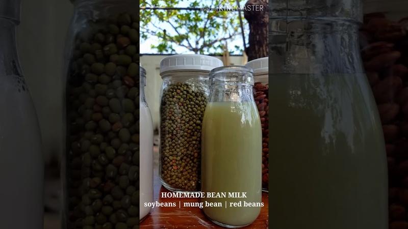 HOMEMADE BEAN MILK | soy, mung bean, red beans