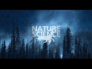 Познавательный канал Nature Science