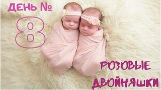 День восьмой.  Розовые двойняшки.