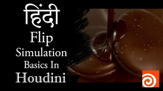 Houdini Flip Simulation Basics Tutorial Hindi (Project File Included)