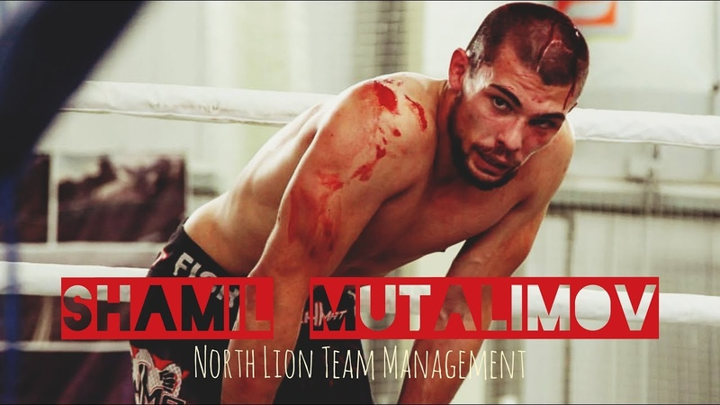 Shamil Mutalimov Шамиль Муталимов NLTM