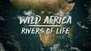 Замбези Дикие реки Африки Discovery Channel