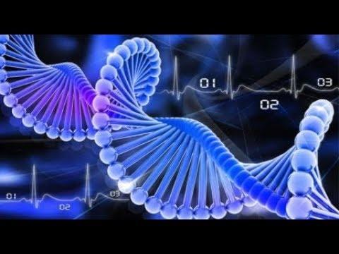 Генетики утверждают ДНК человека создали искусственно. Кто мог такое придумать. Теория происхождения