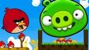 ЗЛАЯ ДИЧЬ или Удар СВИНЕЙ 3 Angry Birds Cannon 3 KICK PIGGIES TO MEET GIRLFRIEND BIRD на крутилкины