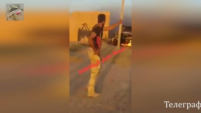 Сирия Война в Сирии Львы Сирийской арабской армии преследуют остатки ИГИЛ в пустыне Ракка