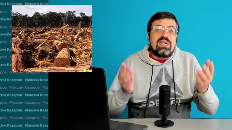 При Зеленском всё стало ещё хуже Ужасная и бесконтрольная вырубка лесов продолж