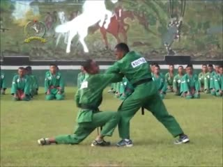 Базовая техника Ен Му До в исполнении Индонезийских курсантов военной академии