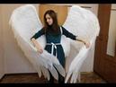 Крылья ангела / Angel wings