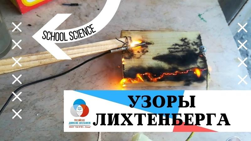 School science Узоры Лихтенберга своими ркуками