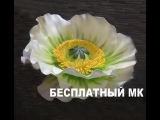 БЕСПЛАТНЫЙ МК. Фантазийный МАК из изолона./ Free master  an isolon