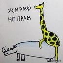 Фотоальбом Антона Садовничия