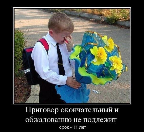 https://sun9-17.userapi.com/c540102/v540102628/2b601/WYfyQQ5viJ0.jpg