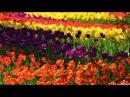 George Bakh - Last Goodbye (Etasonic Remix) [Airstorm]
