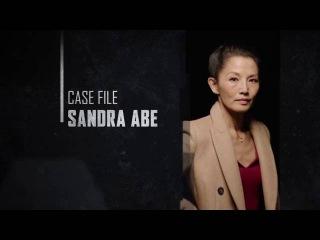 Berlin Station. Case file. Sandra Abe