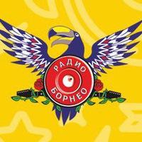 Логотип Радио Борнео Воронеж / 107,2 FM