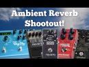 Ambient Reverb Shootout! (Strymon, Neunaber, MXR, Boss, TC Electronic.)