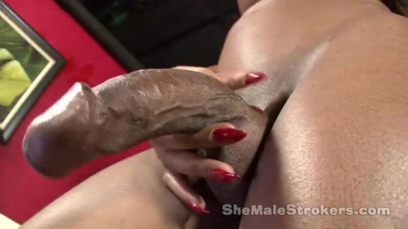 Shemale Sexy nigga (транс,