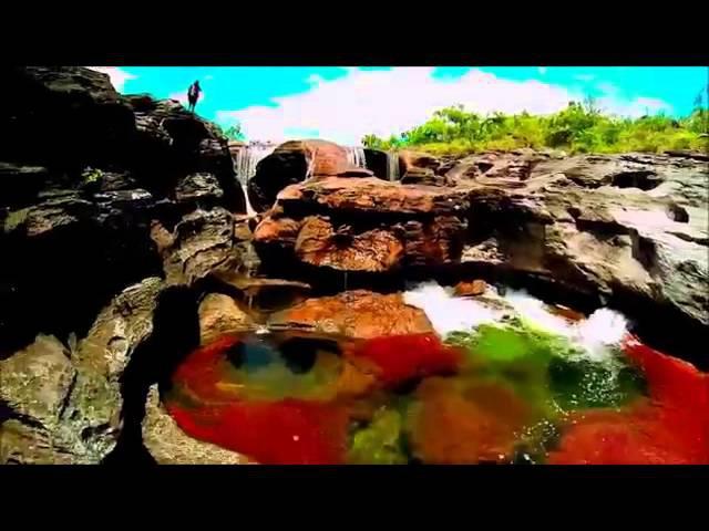Каньо-Кристалес или река пяти цветов — самая красивая река в мире
