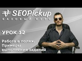 SEOPickup. Базовый курс. Урок 12. Работа в полях. Примеры выполнения заданий