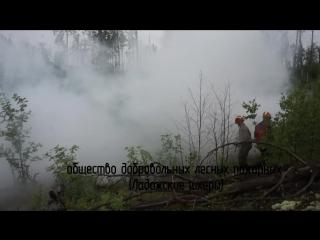 Учебный пожарный лагерь Гринпис России и ОДЛП на Ладоге