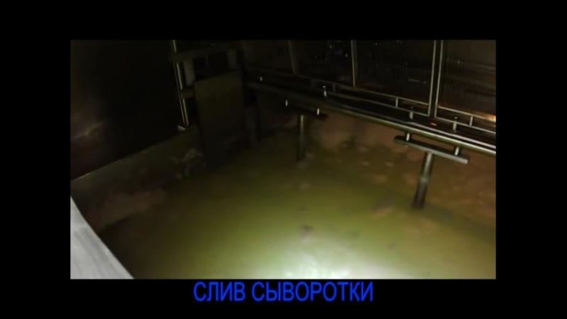 Линия производства зерненого творога avi 1