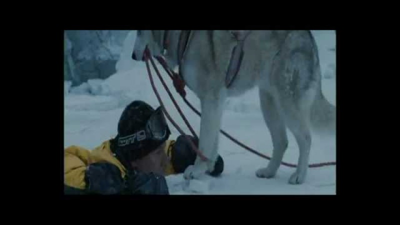 The more I learn about people the more I love dogs Eight Below, music- Enigma Moment of piece