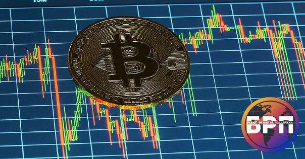альфа кэш на биткоин термобелье торговой марки