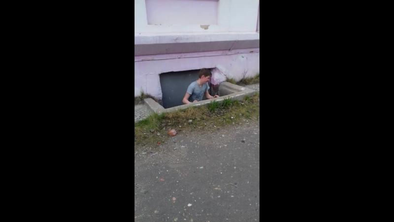чо ты там делал?
