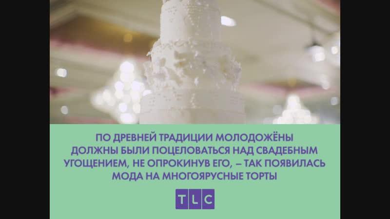TLC Оденься к свадьбе