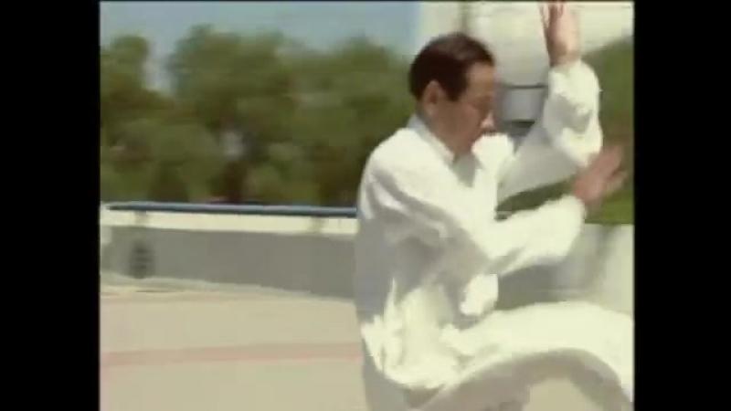 Один из лучших мастеров Китая Ся Бохуа синъицюань