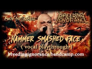 Breeding ignorance hammer smashed face (vocal playthrough / cover)