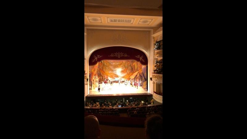 Жизель театр оперы и балета Это прекрасно 😍 vip ложа
