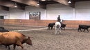 DM 2014 Neu Anspach Working Equitation Cows Stefan Schneider 1